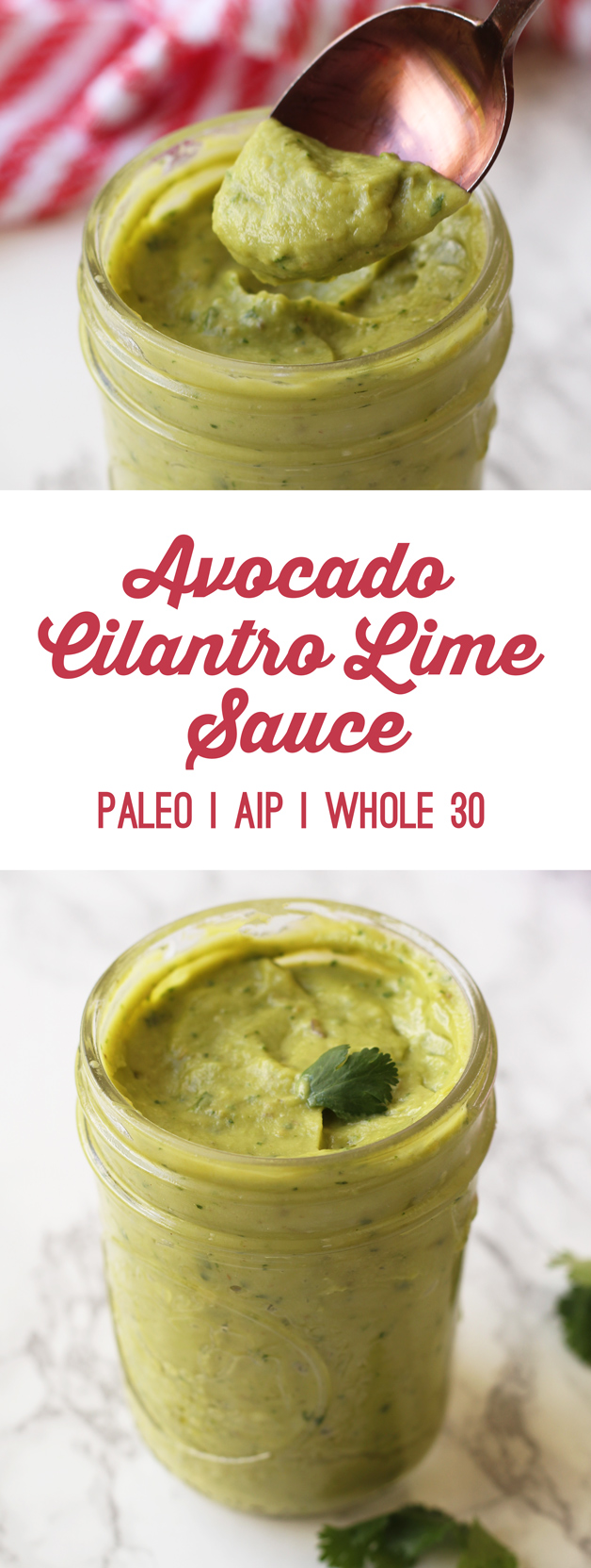 Avocado Cilantro Lime Sauce Recipe (AIP, Paleo, Whole 30)