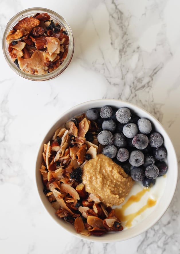 Grain Free Blueberry Coconut Granola (Paleo & AIP)