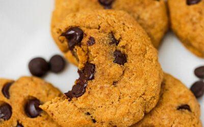 Paleo Pumpkin Chocolate Chip Cookies (AIP)