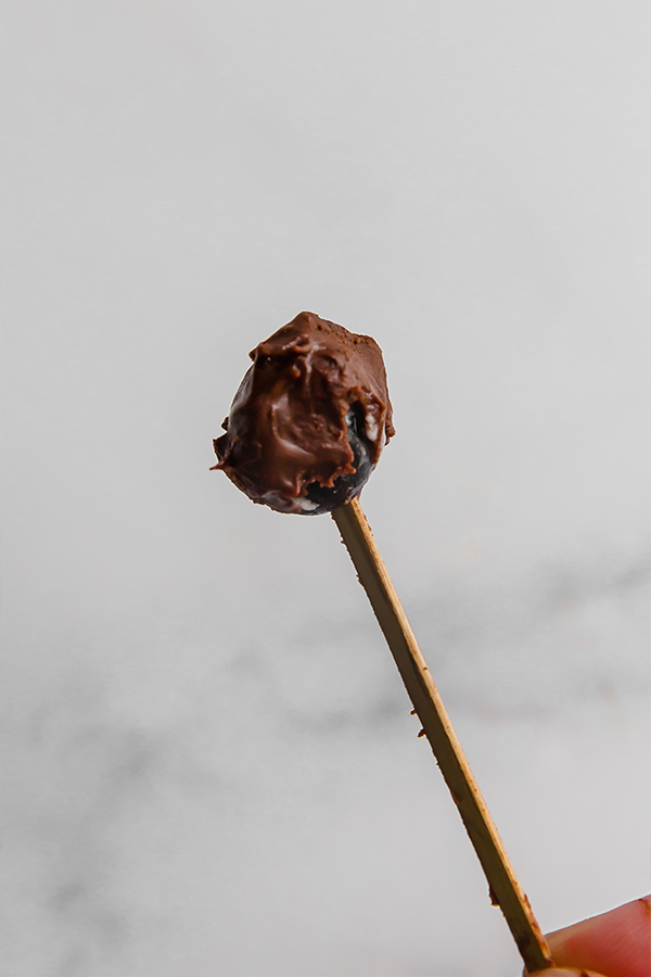 Chocolate covered blueberry frozen on a stick